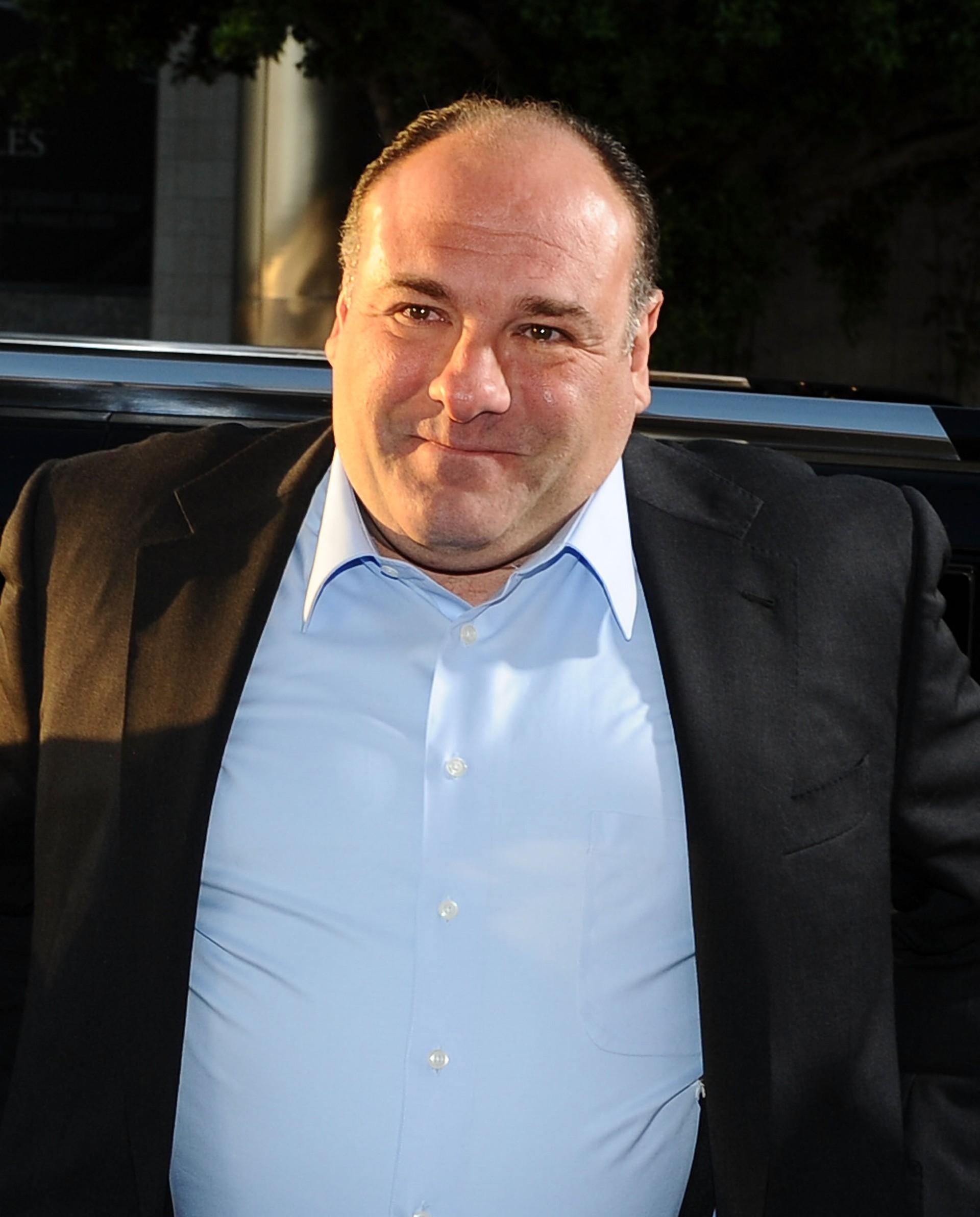 Gandolfini ganhou fama ao dar vida a Tony Soprano nas seis temporadas da série de TV 'The Sopranos'. Quando morreu inesperadamente por parada cardíaca durante as férias em Roma com amigos e família, atores como Samuel L. Jackson, Susan Sarandon e Olivia Wilde aplaudiram seu talento e bondade. (Foto: Getty Images)