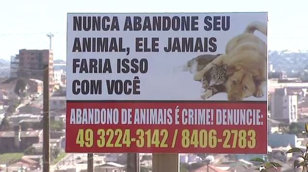 Placas pedem para que moradores não abandonem seus animais (Foto: Reprodução/RBS TV)