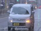 Cai sobre Tóquio 1ª nevasca no mês de novembro em mais de 50 anos