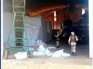 Sacas de feijão roubadas (Foto: Reprodução/TV Bahia)
