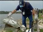 Peritos utilizam cabos de aço para retirar avião do mar em Maricá, RJ