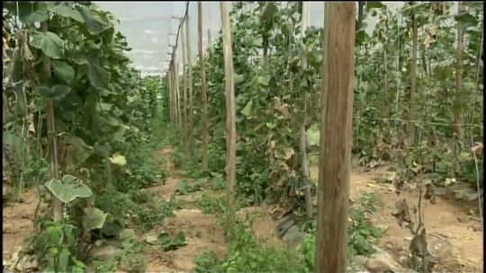Programa que beneficia produtores rurais retorna para Itararé