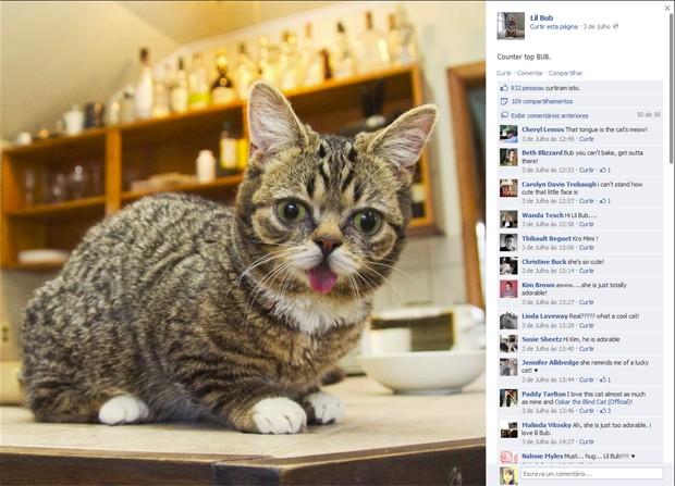 Bub, em seu perfil do Facebook (Foto: Reprodução)