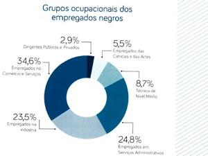 Rendimento médio domiciliar de acordo com a cor do chefe (Foto: Divulgação)