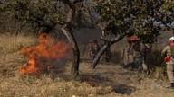 Veja a previsão do tempo e como evitar queimadas