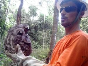 Animais são resgatados diáriamente de área afetada. Belo Monte Usina Hidrelétrica Alrtamira Xingu Norte Energia (Foto: Norte Energia)