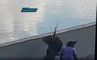 Policiais apreendem 50 flechas em confronto com índios em Brasília