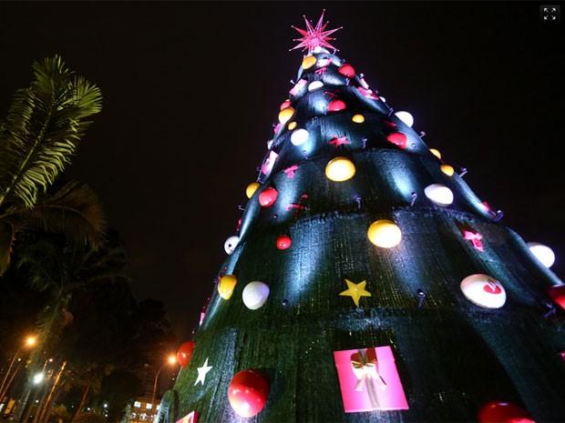 Árvore de Natal do Ibirapuera em 2013 (Foto: Raul Zito/G1)