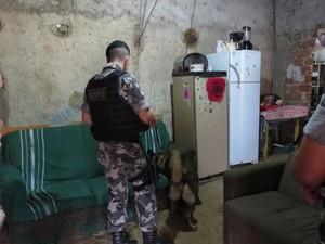 Investigações sobre a quadrilha duraram quatro meses, segundo a polícia (Foto: Divulgação/PM)