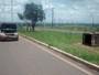 Batida entre carroça e carro no Setor Militar Urbano, no DF, deixa um ferido
