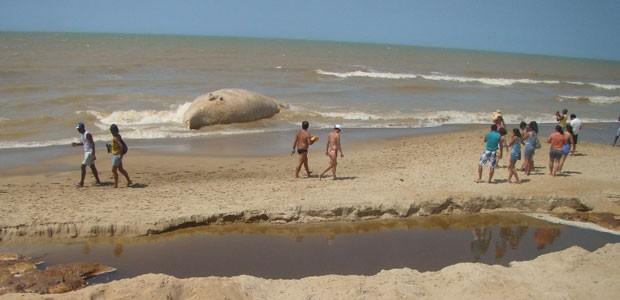 Baleia jubarte encalhada em São Francisco de Itabapoana (Foto: Eliel Pereira/Internauta)