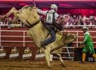 Fotos: Confira 2ª noite do rodeio internacional em Barretos (Mateus Rigola/G1)