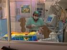Bebê que seria vítima de maus-tratos está internado há três meses em MT