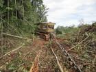 MT concentra 72% dos desmates na Amazônia em abril, aponta Imazon