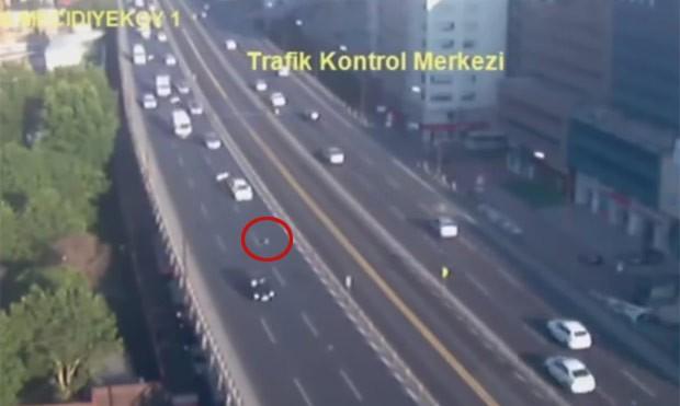 Motorista freou ao ver ave e acabou levando a engavetamento (Foto: Reprodução/YouTube/Daily Sabah)
