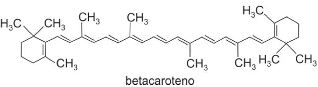 Fórmula estrutural do betacaroteno (Foto: Reprodução/Fuvest)