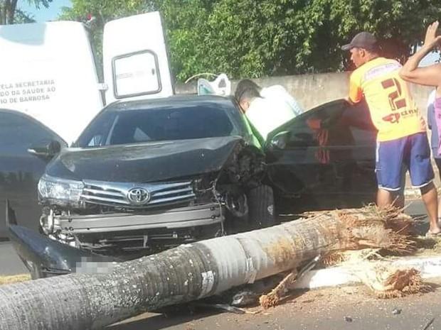 Carro bateu em coqueiro, que acabou caindo (Foto: Everton Vianna/TEM Você)