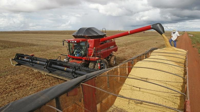 colheita-de-soja-graos-agricultura-campo-novo-dos-parecis (Foto: Ernesto de Souza/Ed. Globo)