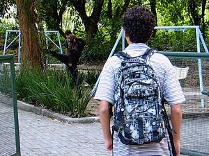 Paulino decide se aproximar dela, mas ela corre (Foto: Malhação / TV Globo)