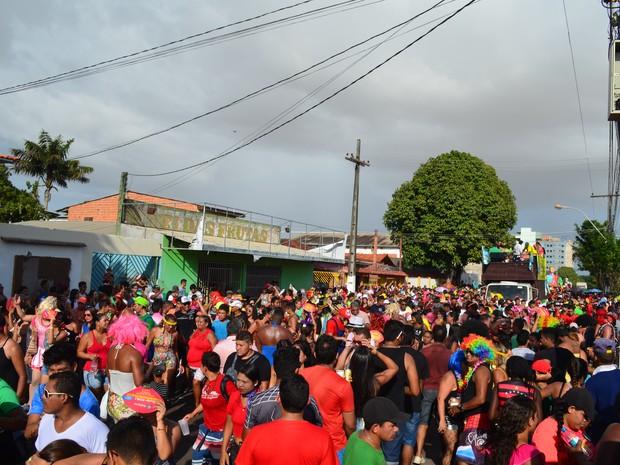 Bloco percorreu circuito de mais de cinco quilômetros pelas ruas de Macapá (Foto: John Pacheco/G1)