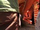 Brasil tem o maior número de casamentos infantis na América Latina