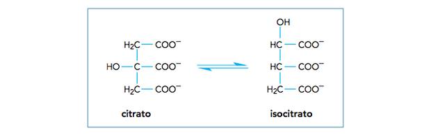 Questão 43 de química (Foto: Uerj/2014)