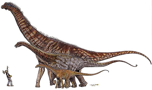 Ilustração retrata dimensões do 'Austroposeidon magnificus' perto de dinossauros menores (Foto: divulgação)