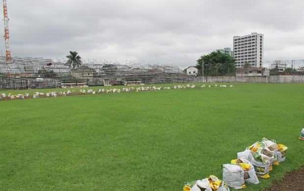 Estádio Mansueto Pierotti gramado (Foto: Bruno Gutierrez / Globoesporte.com)