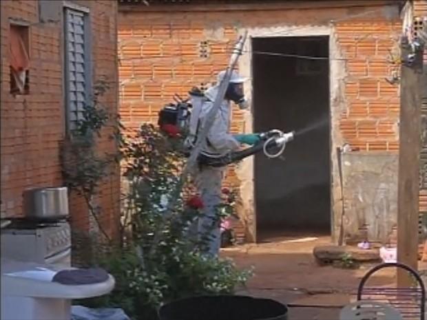 Agentes entram nas casas para fazer remoção de criadouros e nebulização (Foto: Reprodução/TV TEM)