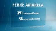 Primeira morte por febre amarela fora de Minas Gerais é confirmada