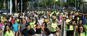 'Cãominhada' acontece domingo (25) em Belém (divulgação)