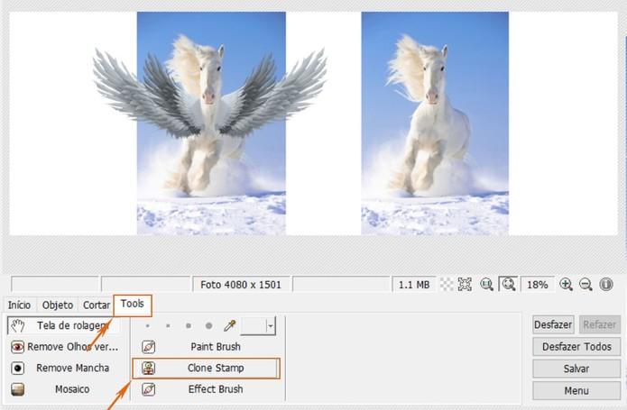 Ative a ferramenta de Clone Stamp no PhotoScape (Foto: Reprodução/Barbara Mannara)