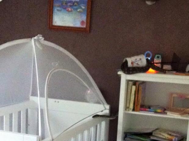 Píton foi flagrada deslizando em berço de bebê na Austrália (Foto: Reprodução/Facebook/Snake Catchers Brisbane, Ipswich, Gold Coast & Toowoomba)