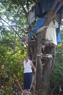 Idosa mora há 10 anos em uma casa na árvore (Foto: Natacha Portal/G1 RR)