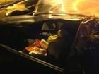 Jovem morre após carro atropelar boi que invadiu estrada no Paraná