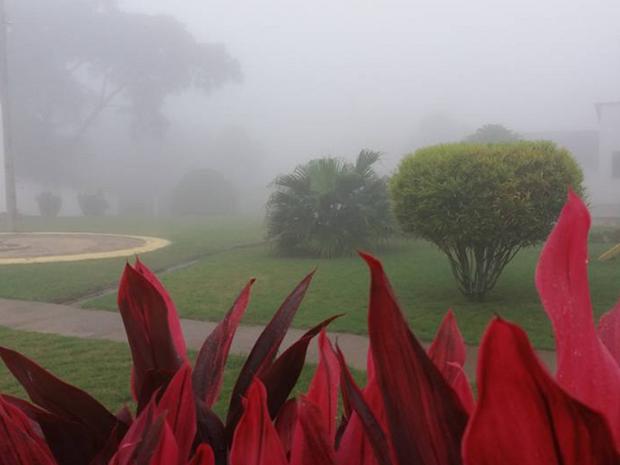 Em Viçosa do Ceará choveu 19 milímetros.  (Foto: Tadeu Feitosa/Arquivo Pessoal)