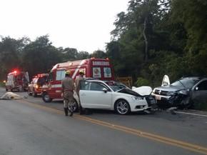 Jovem morreu após bater contra vaca e atingir carro em Ipameri, Goiás (Foto: Divulgação/Corpo de Bombeiros)