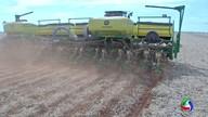 Avanço das lavouras de soja em MT deve ser o menor da história