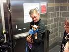 Garota não segura emoção ao rever cão sumido havia 3 anos nos EUA