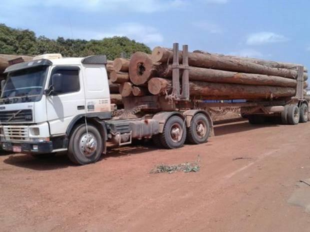 Polícia Rodoviária Federal apreendeu cinco veículos com madeira transportava ilegalmente pela BR-010 nesta segunda-feira (17). (Foto: Divulgação/Polícia Rodoviária Federal)