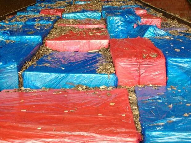 Segundo a polícia, cerca de 900 caixas foram apreendidas (Foto: Polícia Federal/Divulgação)