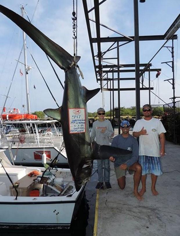 Jack Leverone, de 15 anos, fisgou um tubarão-raposa de 248 quilos no Havaí (Foto: Reprodução/Facebook/The Charter Desk at Honokohau Marina)