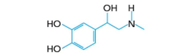 Fórmula estrutural da adrenalina (Foto: Colégio Qi/Reprodução)