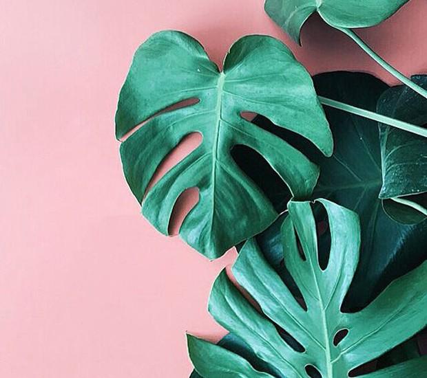decoração-verde-e-rosa (Foto: Reprodução/Pinterest)