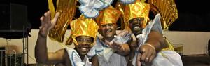 Quatro escolas de samba desfilaram pelas ruas da cidade  (Marcello Carvalho/G1 Campinas)