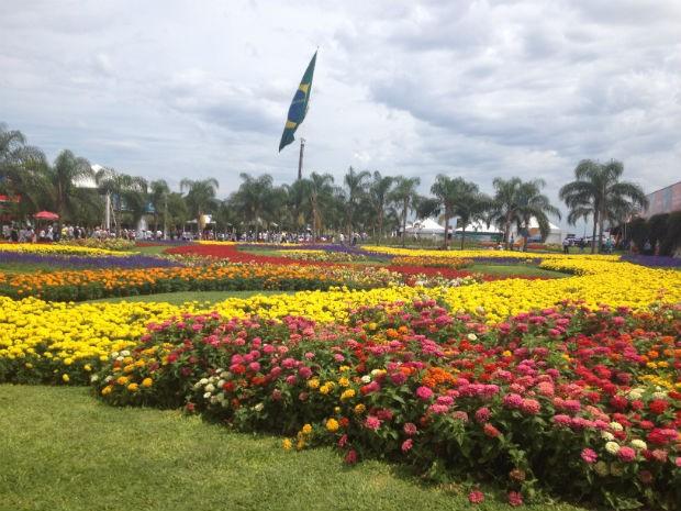 As flores sempre encantam o público feminino (Foto: Franciele John/ G1)