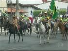 Encontro de criadores de mulas reúne centenas de pessoas na BA