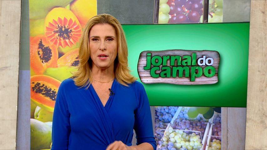 Claudia Gregório comanda o Jornal do Campo (Foto: (Divulgação/ TV Gazeta))