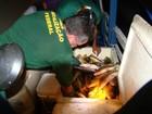 Operação apreende 21t de pescado e quase 30 animais silvestres no AM