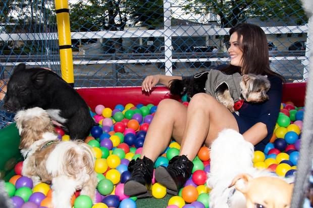 Geisy Arruda comemora aniversário de seu cachorrinho, Mike, e brinca com João, porco de Vanessa Mesquita (Foto: Adriano Giacon / AgNews)